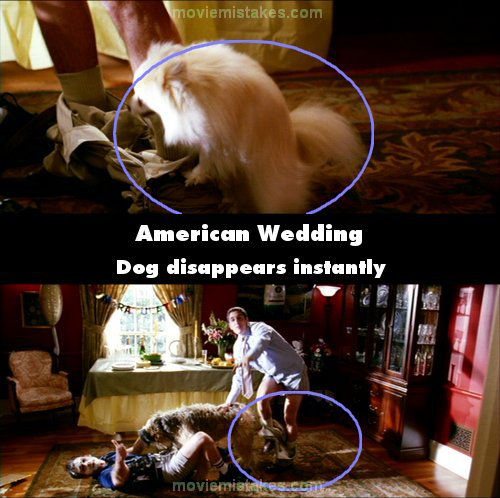 American Wedding picture