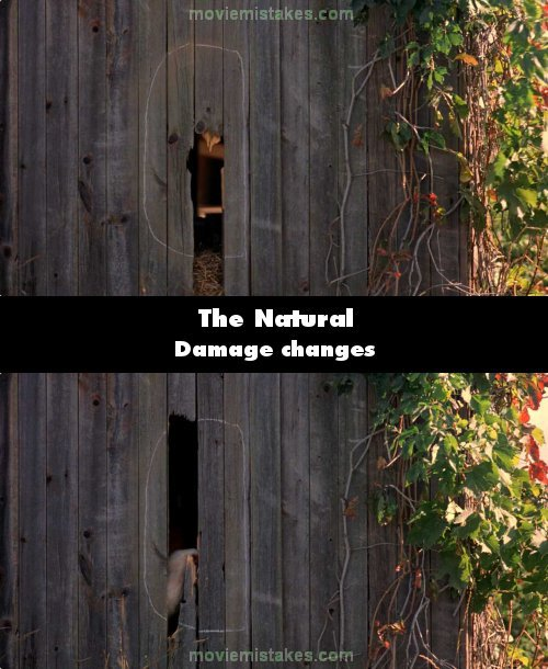 The Natural mistake picture