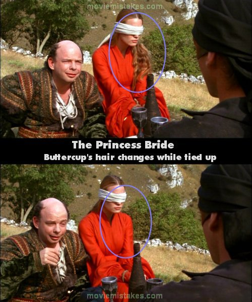 The Princess Bride mistake picture