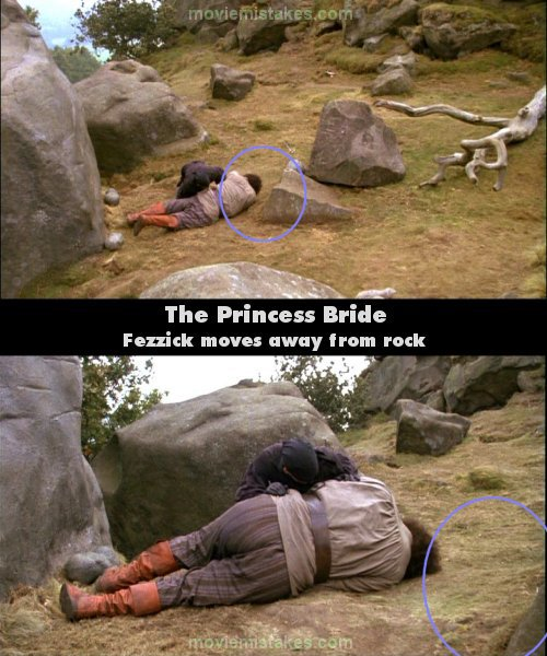 The Princess Bride picture