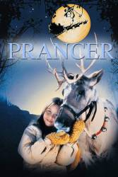 Prancer picture