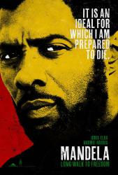 Mandela: Long Walk to Freedom picture