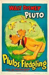 Pluto's Fledgling picture