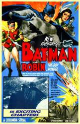 Batman and Robin picture