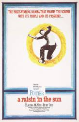 A Raisin in the Sun picture