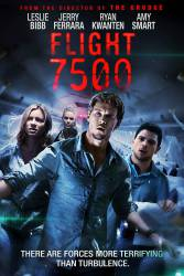 Flight 7500 picture