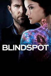 Blindspot picture