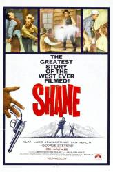 Shane picture