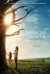 Miracles from Heaven picture