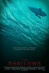 The Shallows picture