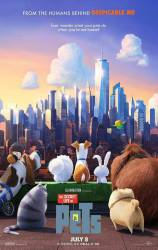 The Secret Life of Pets picture