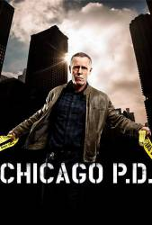 Chicago P.D. picture