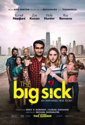 The Big Sick picture
