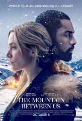 The Mountain Between Us picture
