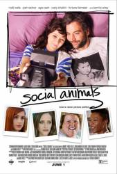 Social Animals picture