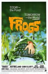 Frogs picture