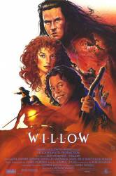 Willow picture