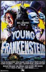 Young Frankenstein picture