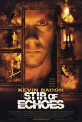 Stir of Echoes picture