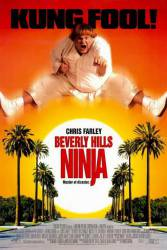 Beverly Hills Ninja picture