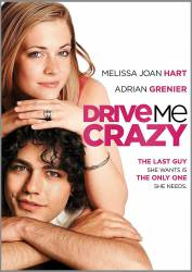 Drive Me Crazy picture