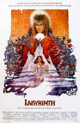 Labyrinth picture