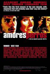Amores perros picture