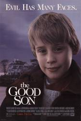 The Good Son picture