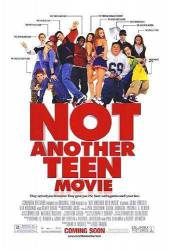 Not Another Teen Movie picture