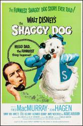 The Shaggy Dog picture
