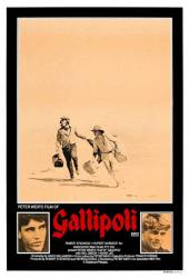 Gallipoli picture