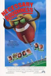 Necessary Roughness picture