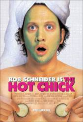 The Hot Chick picture