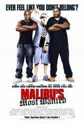 Malibu's Most Wanted picture