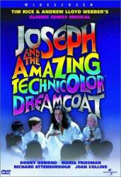 Joseph and the Amazing Technicolor Dreamcoat picture