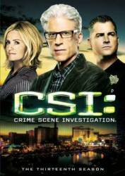 CSI: Crime Scene Investigation picture