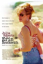 Erin Brockovich picture