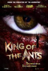 King of the Ants picture