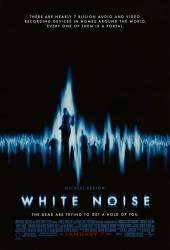 White Noise picture