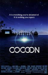 Cocoon picture