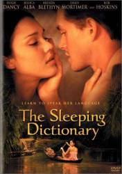 The Sleeping Dictionary picture