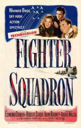 Fighter Squadron picture