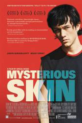 Mysterious Skin picture