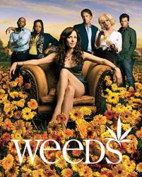 Weeds picture
