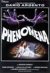 Phenomena picture