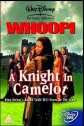 A Knight In Camelot picture