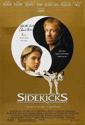 Sidekicks picture