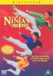 3 Ninjas Kick Back picture