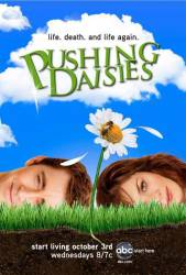 Pushing Daisies picture