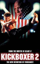 Kickboxer 2: The Road Back picture